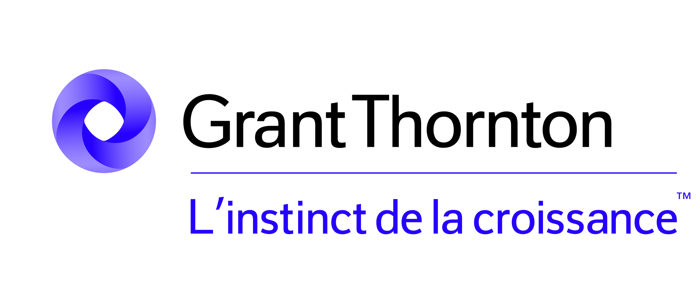 GRANT THORNTON France-medium-Primary.jpg